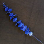 89035-blue